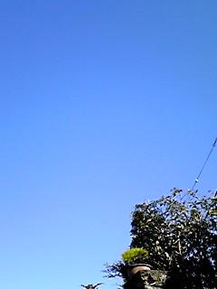 空・色・空・色・空