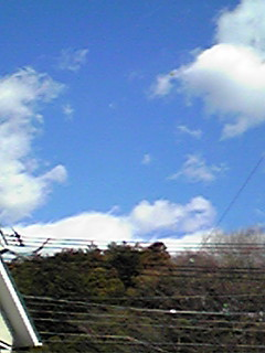 輝く白い雲たち!