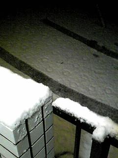 積雪3㎝位かな?
