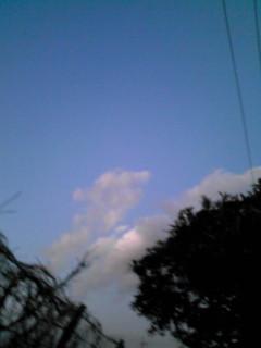 今日見た…空