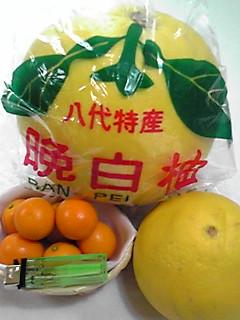 高級柑橘類〜!