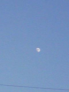 今日は見られた夕日、夕焼け、お月様〜!