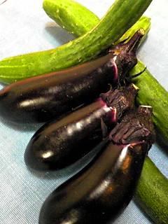 お野菜、新鮮です!