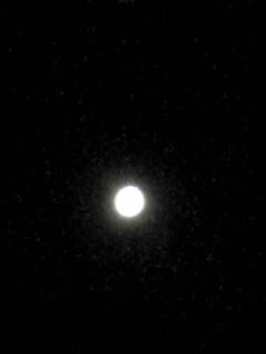 昨夜の満月ですよ!