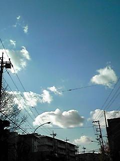 空は穏やかお出かけ日和ですね!