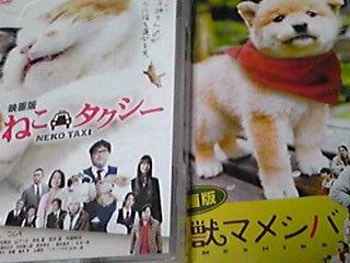 「幼獣マメシバ」&「ねこタクシー」映画版DVD