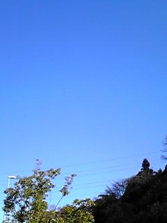 青い空…そして何故かプレミアムな〇〇〇