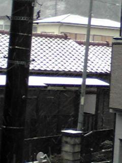 雪が積もってる〜!
