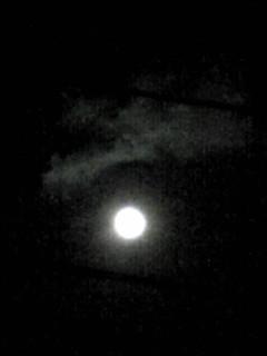 今夜は満月のお月様(王妃としては久しぶり〜♪)