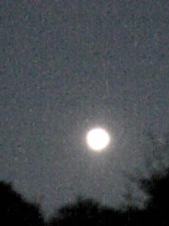 ほぼ満月のお月様です(ゆめきぼミラクルツアー終了の夜に…)