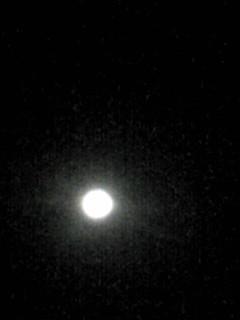 十五夜の真ん丸お月様です(満月)