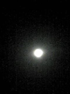 今夜は満月のお月様です。