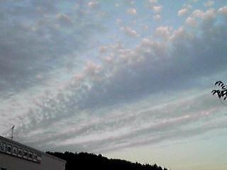今日の空・曇