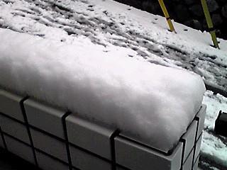 雪一色の2月29日(閏年)でした〜!