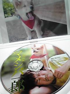 映画「マメシバ一郎」DVD届きました〜♪