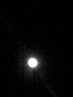今夜のお月様を久々に…