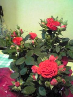 母の日プレゼント♪