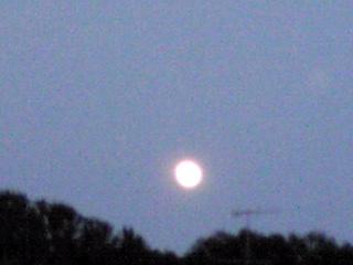 今夜の丸〜るいお月様?でも明日の満月は部分月食に成りますよ!!