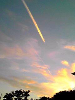 夕日に向かって一直線に…♪
