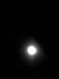 ブルームーンの満月を…