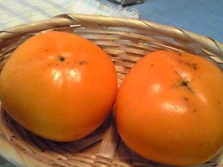 これも秋の味覚(柿、カキ)
