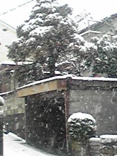 初雪→大雪→吹雪