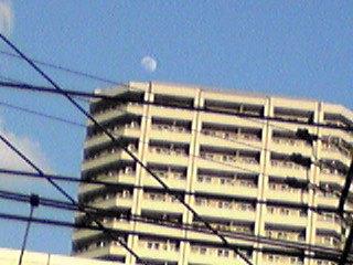 お出かけ中に見えた夕焼けの富士と青空のお月様
