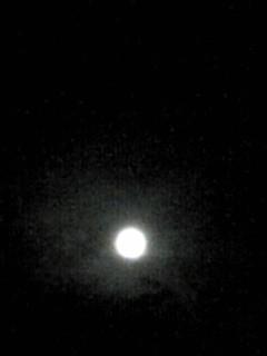ブルームーンのお月様に出会えました♪