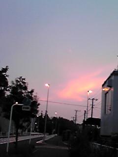 夕空が楽しい〜♪/