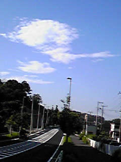 今朝も青空の下で散歩