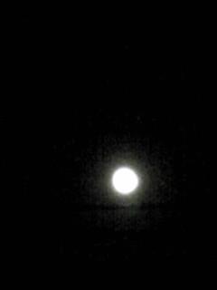 今夜は満月♪しし座流星群もまだ見られるかもね!