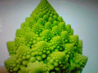 「ロマネスコ」という野菜を食べてみた!