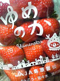 イチゴ・いちご♪