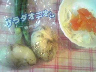 ♪季節のお野菜如何です?‥♪(サラダオニオン)