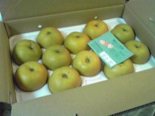 取り立ての神奈川県産のナシ(梨)を届けて戴きました〜♪