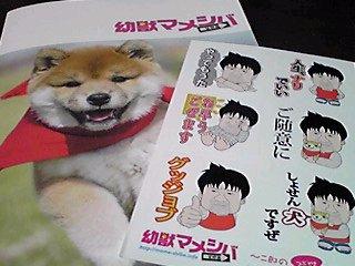 映画版「幼獣マメシバ望郷編」見に行って来ました〜!」