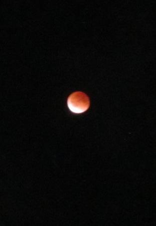 昨日の皆既月食は残念ながら観ることは叶わず…でした。(^^;