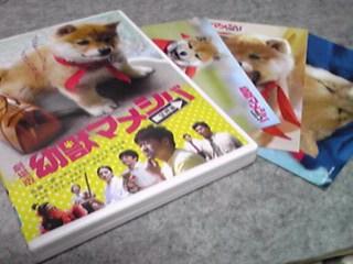 劇場版「幼獣マメシバ・望郷編」DVD入院中に届いてました♪