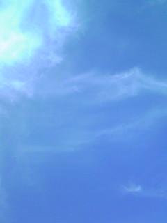 行って来ました!直さん(高橋直純)出演のOTODAMA空フェス♪