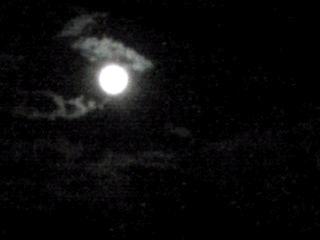 今夜は仲秋の名月(十五夜・芋名月)です!でも満月は明日のスーパームーンのお月様!!