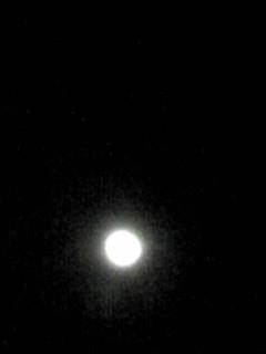 今夜の満月と八幡宮に咲いていた八重咲きの梅の花