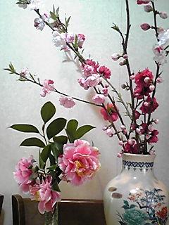 昨日戴いてきた花(ツバキ、ハナモモ)