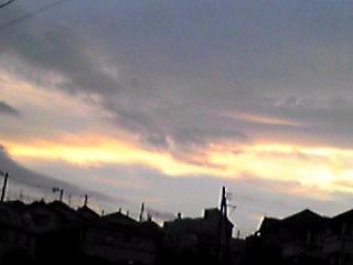 夕方散歩で見上げた空と一本の大根。