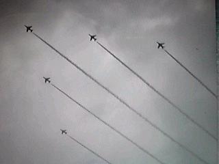 今日はブルーインパルスの展示飛行を見に行って来ましたよ〜♪