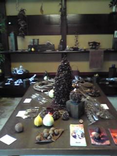 飛騨高山でふらりと立ち寄った木の実のお店「飛騨・森の実」