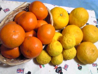 採れたてお野菜頂きましたッ!柑橘類もいっぱ〜い!!