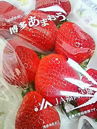 直さん(高橋直純)オフィシャルファンクラブ「n.」限定の日帰りイチゴ狩りツアー開催決定~♪(イチゴ祭りで直祭り~♪)☆☆☆