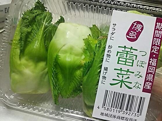 あぁ!やっと見つけた、蕾菜(つぼみな)