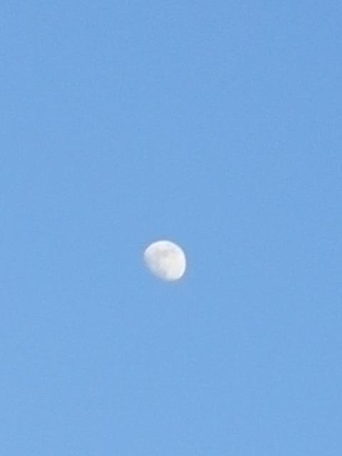 昨日の夕方散歩の空は……