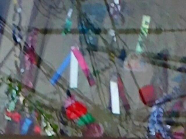 我が家の七夕飾りを眺めながら、みんなの彦星(直さん)のお知らせです( ^-^)ノ∠※。.:*:・'°☆